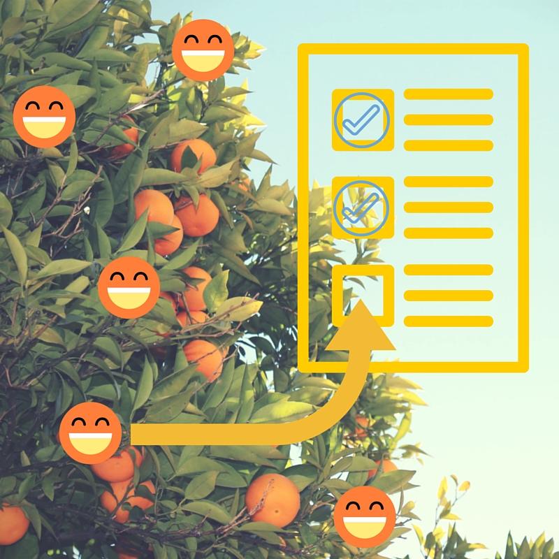 Hay naranjas que convierte, y las que no. Tenemos bases de datos que convierten.